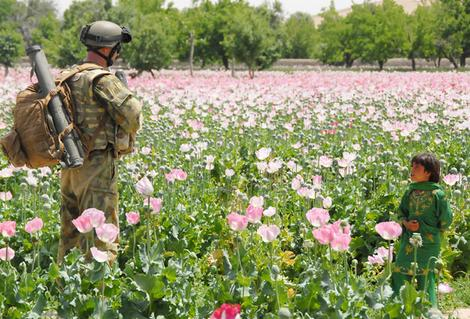 US soldier and Afghani boy in a field of poppies